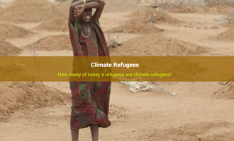 Climate change site Climate Refugees link image